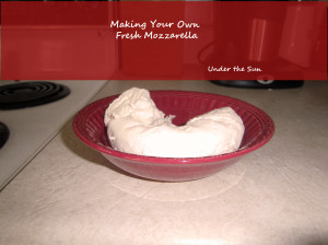Making Your Own Fresh Mozzarella